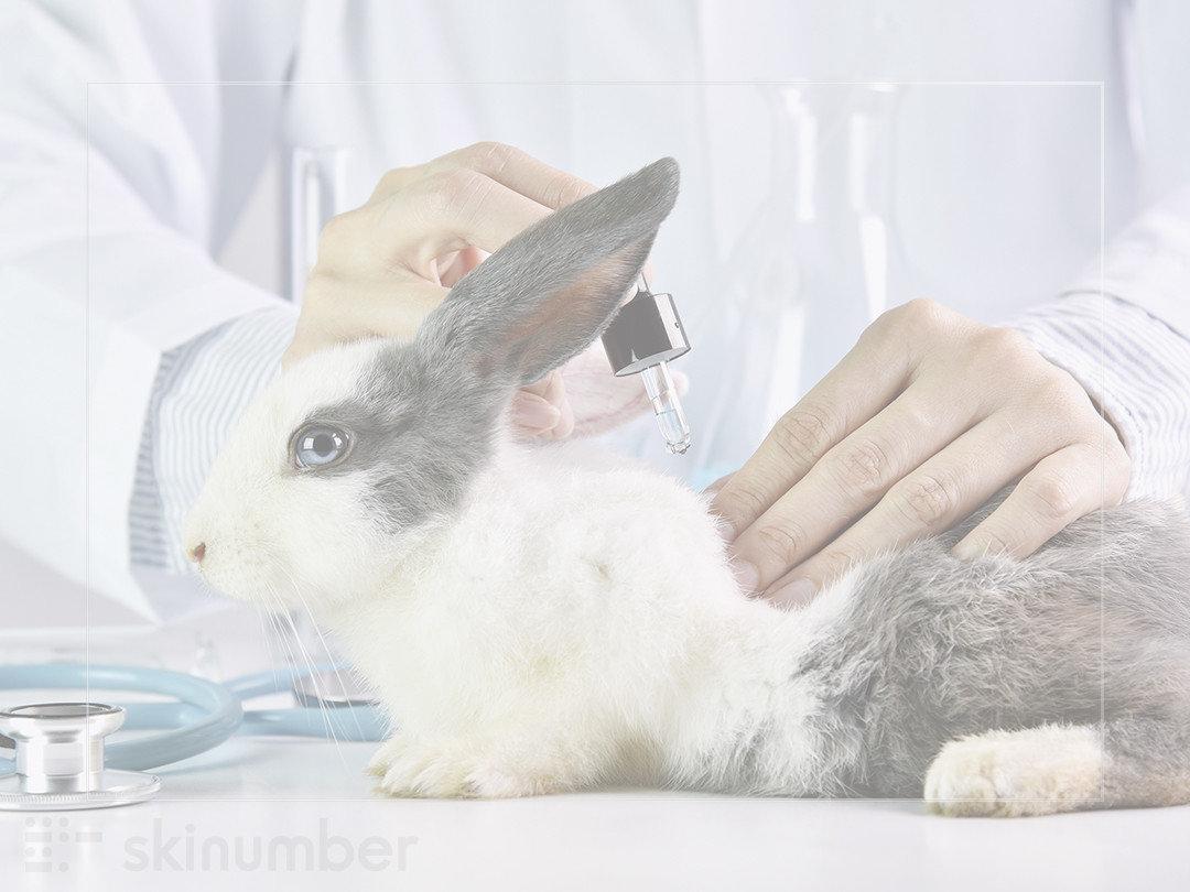 保養品動物實驗